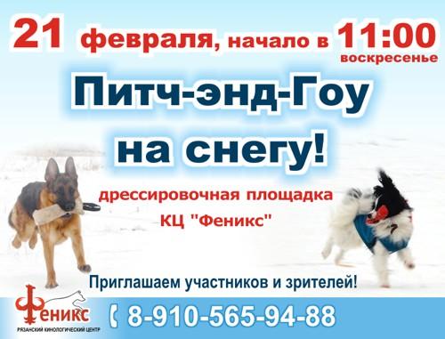 соревнования собак Питч энд Гоу на снегу! 21.02.16, Рязань. Узнать подробнее...