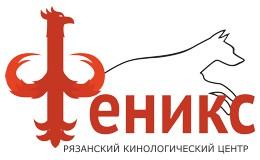 РРОО КЦ Феникс