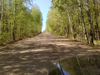 Лесная дорога ДымТамак-Кзыл-Яр