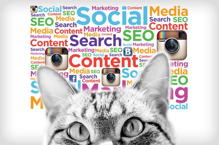Мобильный контент - SEO 2.0