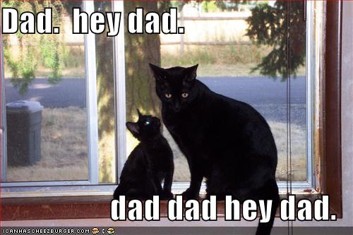 fathers-day-funny (5)