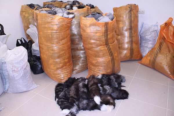 Обрезки меха купить в москве