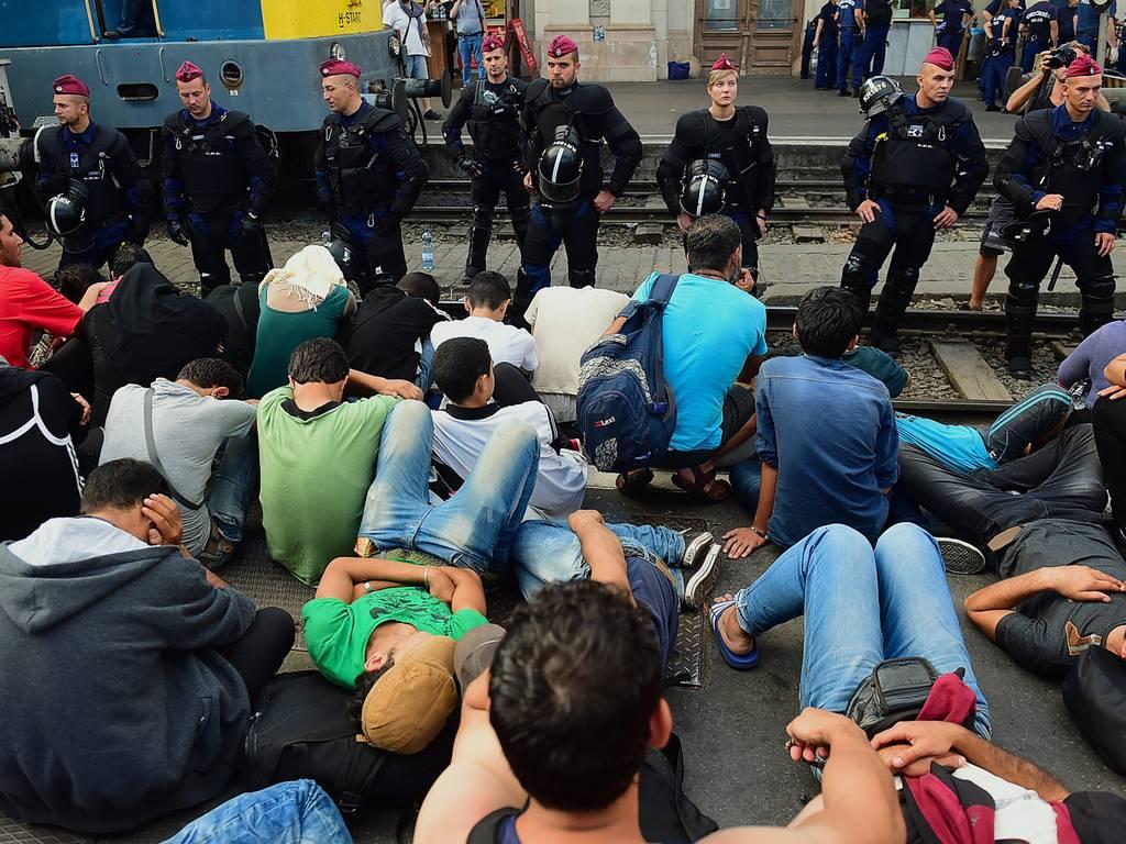Почему мигрантов пускают в европу