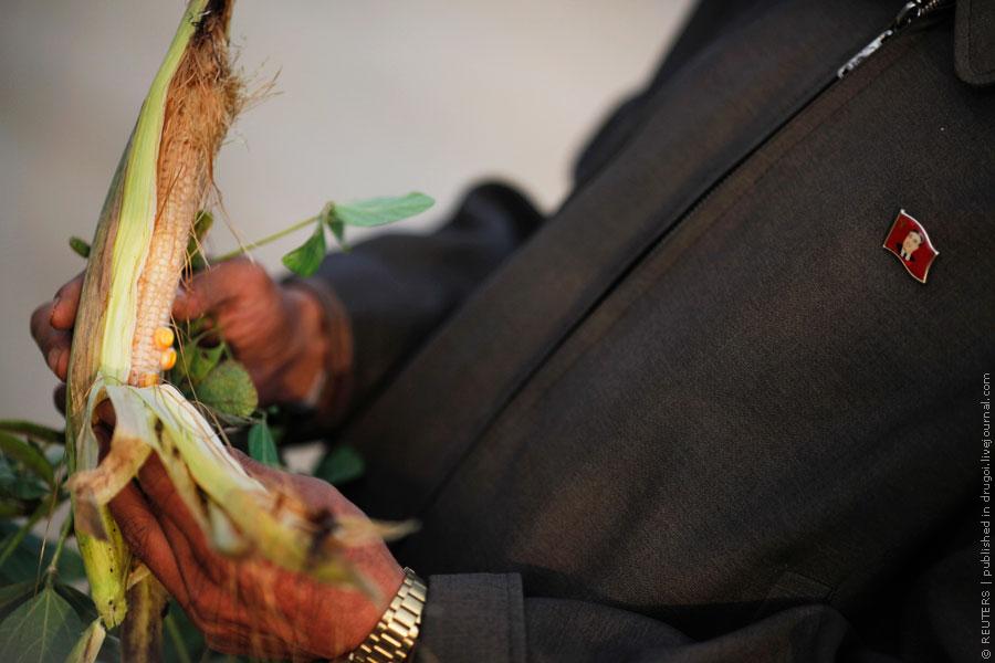 Голод в Северной Корее: фоторепортаж Reuters