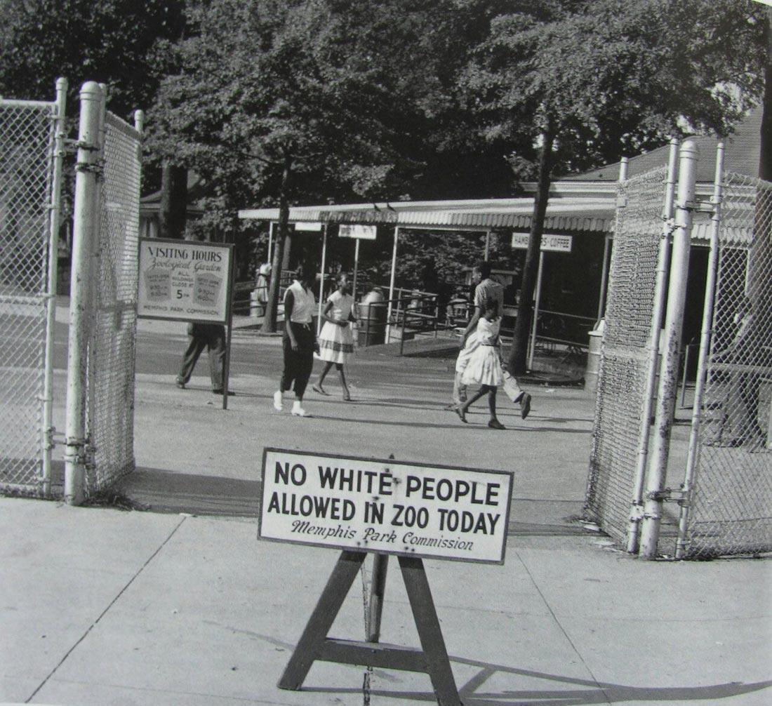 Чёрные негры и белые тёти 18 фотография