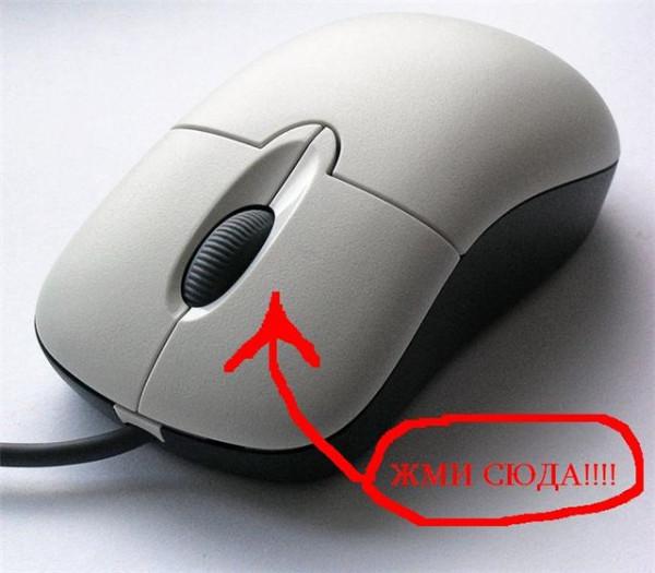 Компьютерная-мышь