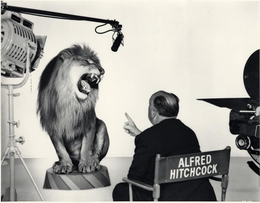 017 Альфред Хичкок снимает льва для логотипа MGM