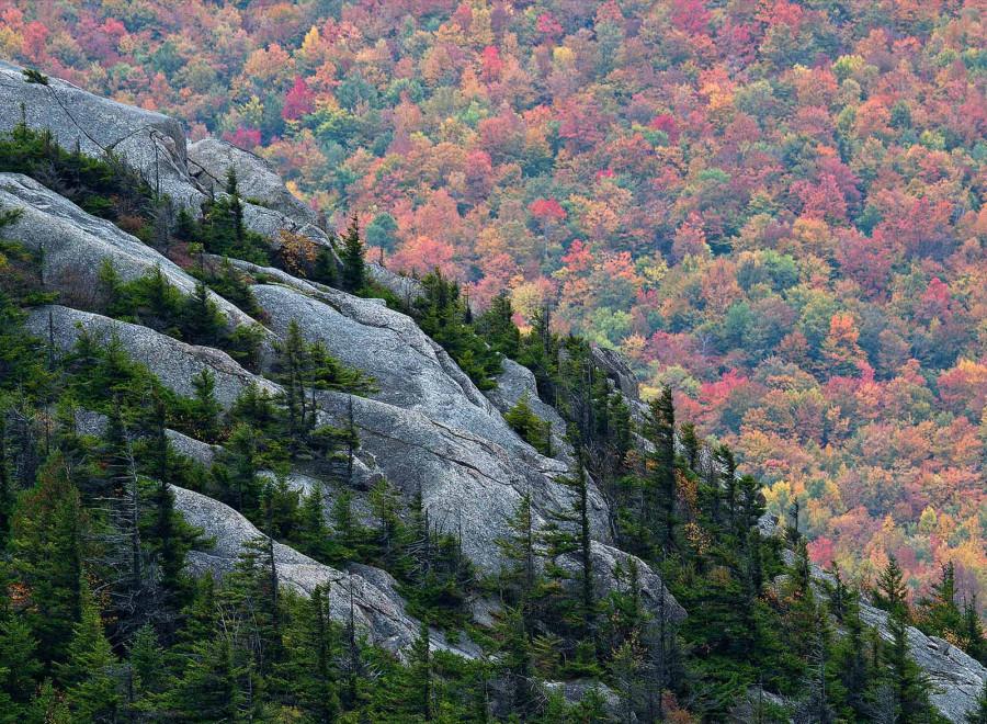 Хвойные-леса-заполнили-трещины-в-горе-Катамаунт,-а-лес-внизу-зеленеет-в-последний-раз-в-преддверии-зимы