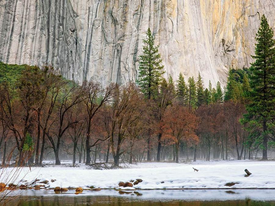 начало зимы в Йосемитском парке