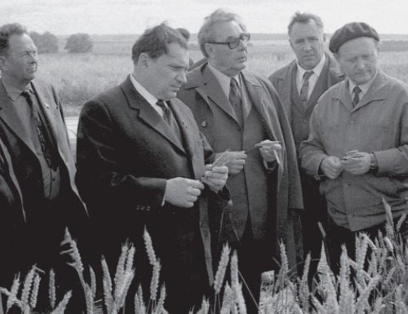 На полях опытного хозяйства по выращиванию зерновых культур. 1971 г