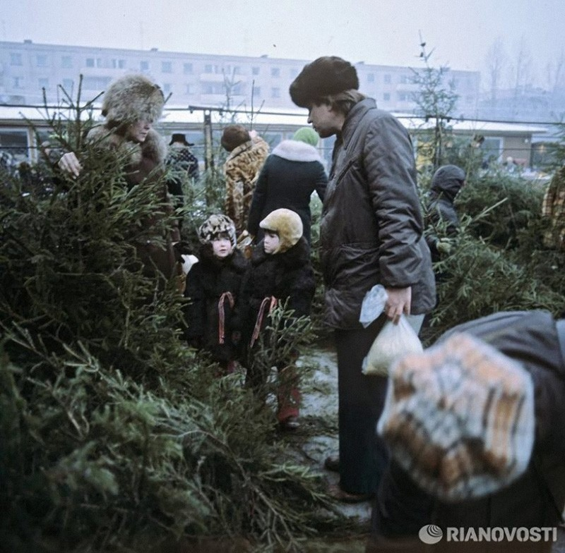 Елочный базар, 1980 год, © РИА Новости, Лев Устинов