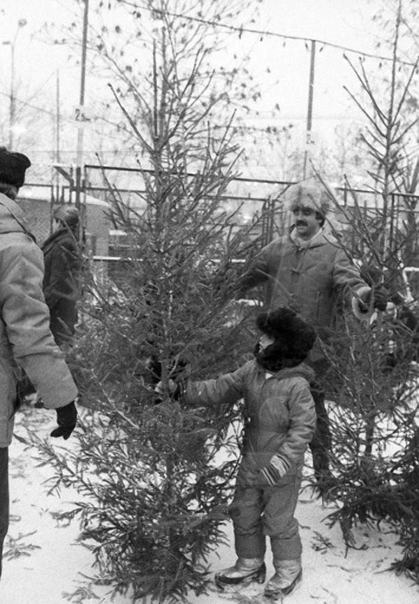 Мальчик с отцом выбирают ёлку на ёлочном базаре накануне Нового года, 1986 год, © РИА Новости, Владимир Федоренко