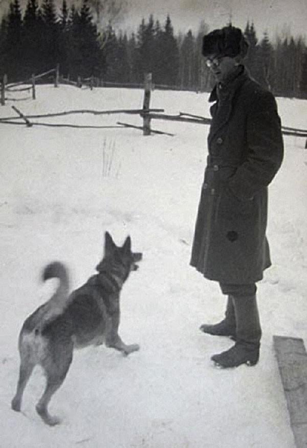 собака и Гайдай