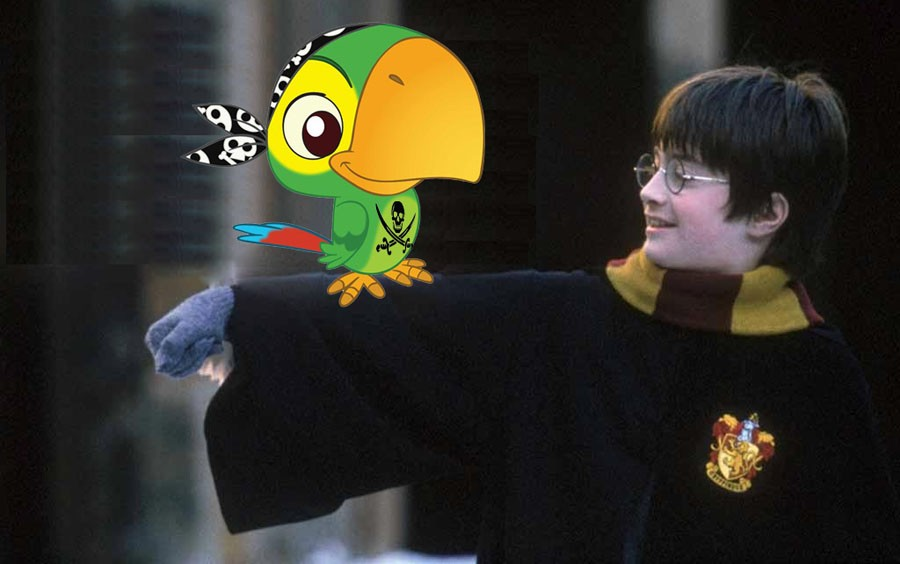 Первый пиратский перевод Гарри Поттера