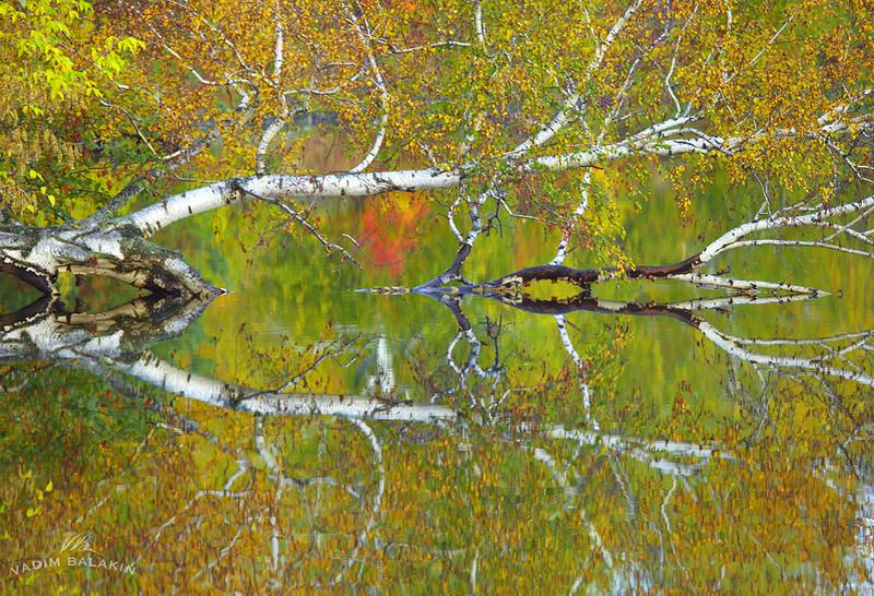 Осень на Урале.jpg
