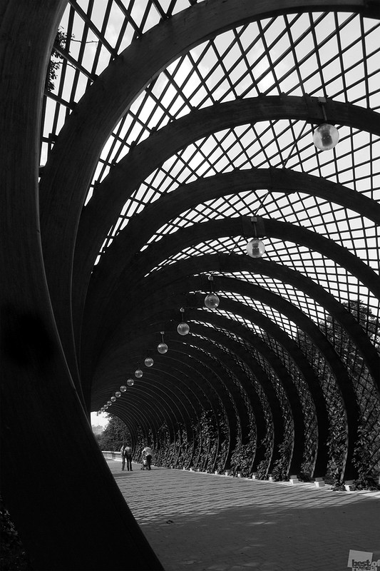 Геометрия дуг. Автор Юлия Макаркина.jpg