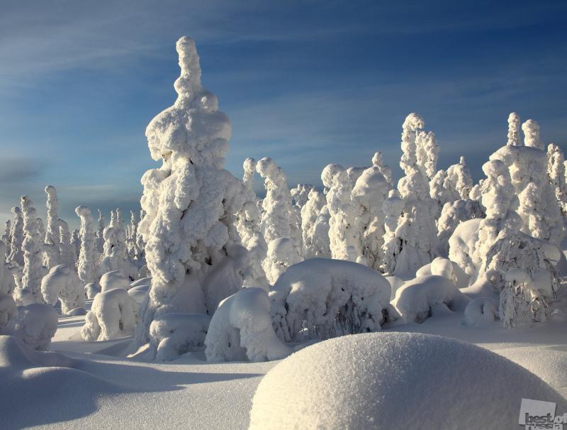 Такая долгая зима. Автор Олег Семененко.jpg