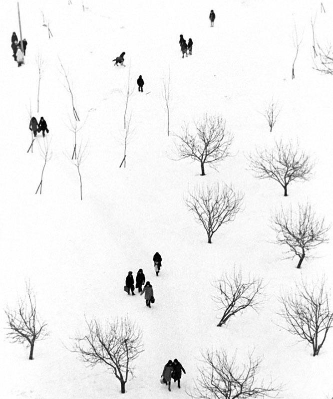 Школьный дворик. Автор Абрамочкин Юрий, 1973.jpg
