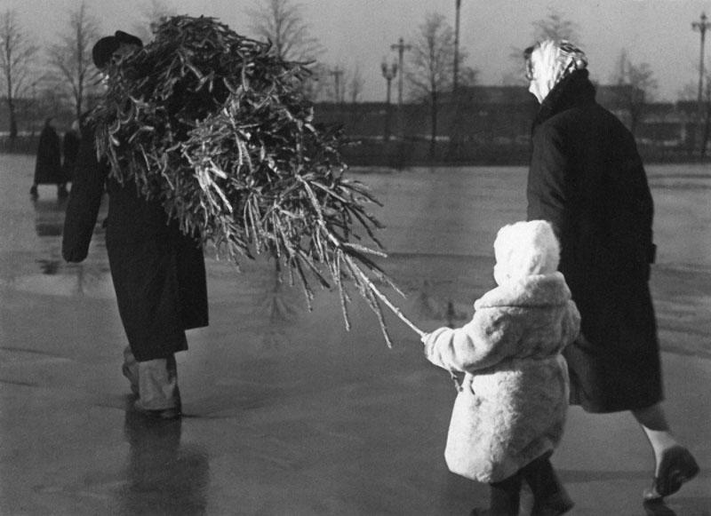 Ёлка. Автор Рахманов Николай, 1950-е.jpg
