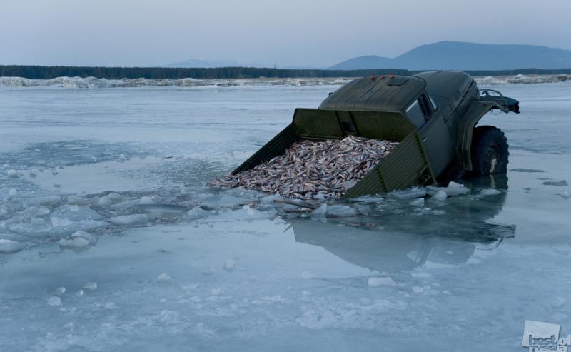 Рыбное место. Автор Дмитрий Гужеля.jpg