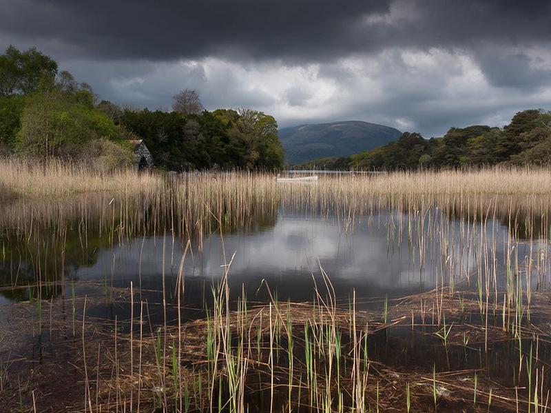 На озере Макросс в Ирландии. (Anthony Byrne)