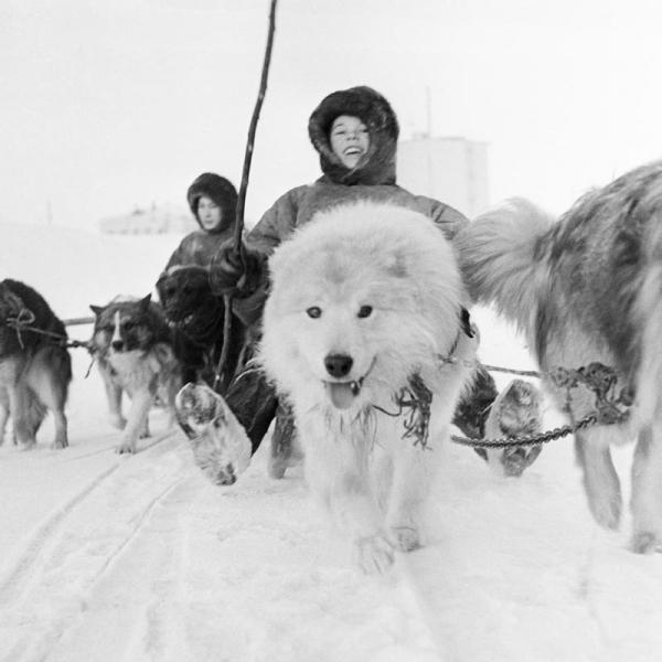 Мальчишки на Севере. Автор Абрамочкин Юрий, 1970-е.jpg