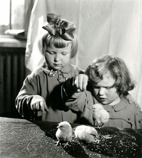 Дети и цыплята. Автор Рюмкин Яков, 1950-e.jpg