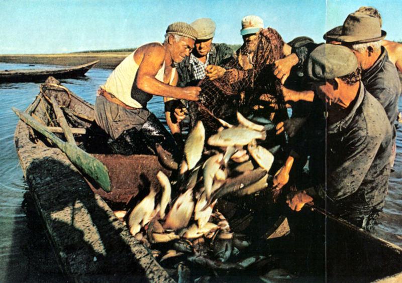 112 1 Рыбаки на Иртыше вблизи Ханты-Мансийска. Летом живут на барже.jpg