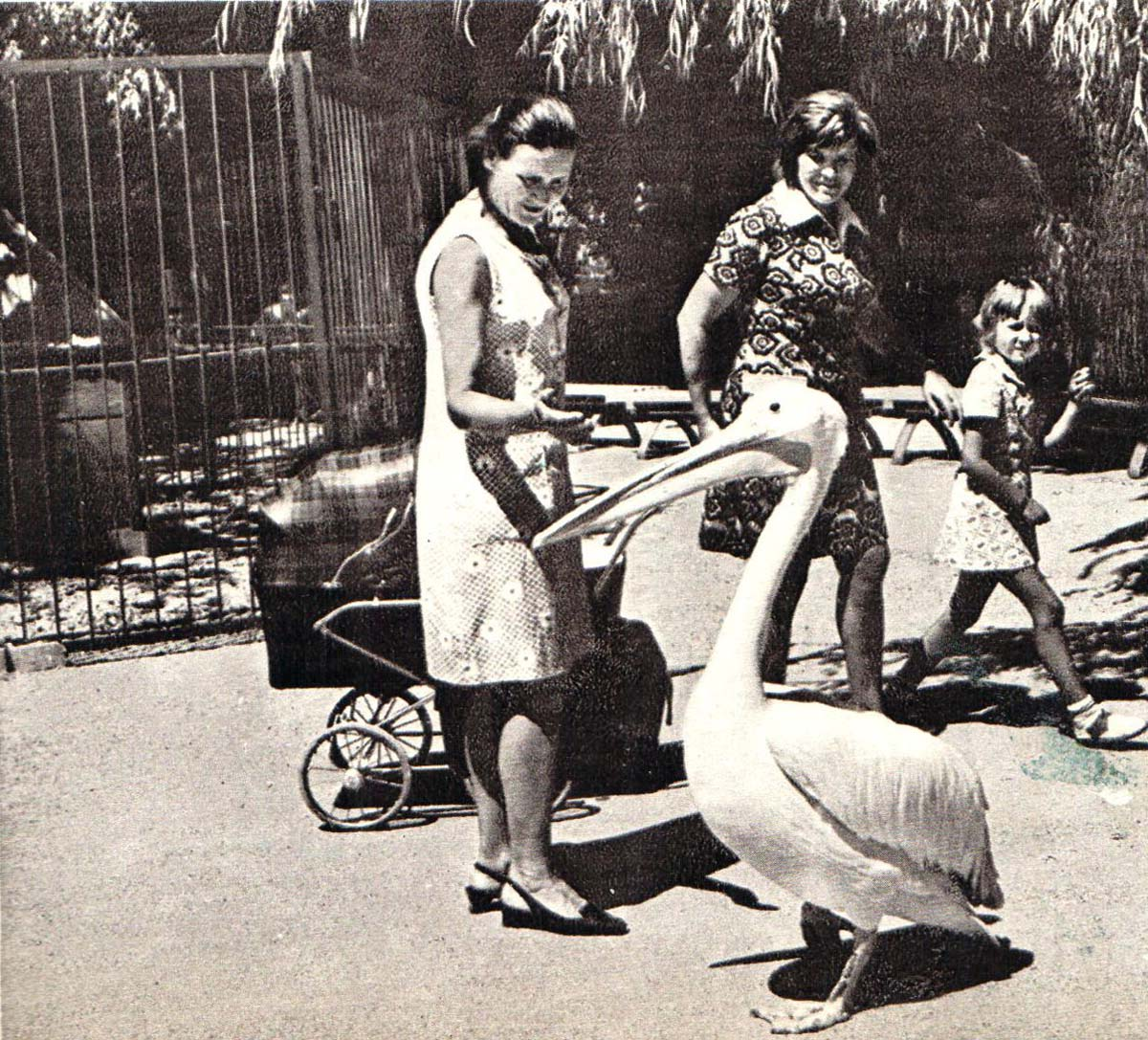 Фотки голышек 70е 25 фотография