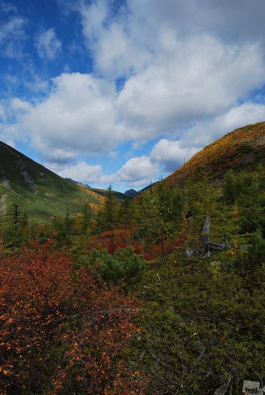 Осень в горах. Автор Евгения Петренко.jpg