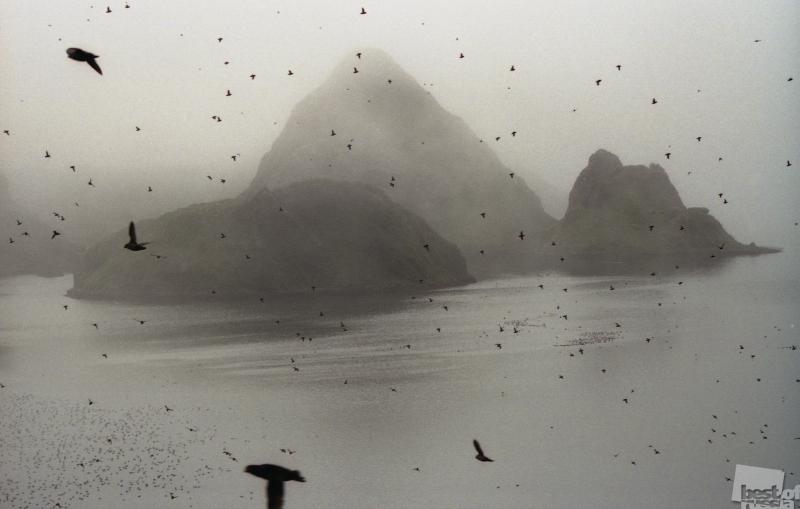 Курилы. Утро у берегов Тихого океана. Автор Владимир Голубцов.jpg