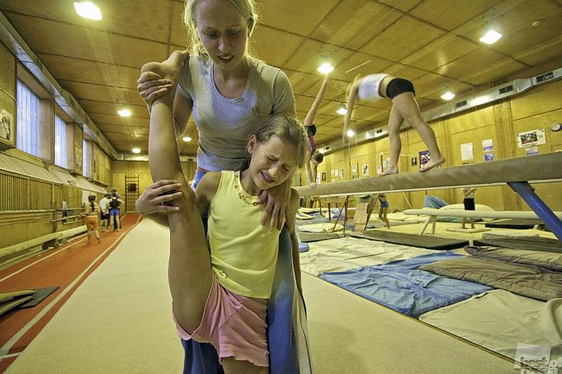 Школа гимнастики. Автор Владимир Ларионов.jpg