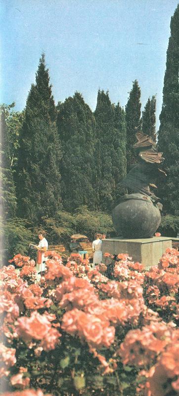 Характерная особенность крымских здравниц - зелёное окружение скверов, парков, полян и цветников