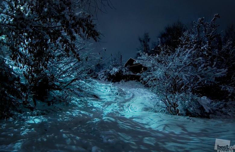 Ночь перед Рождеством, автор Лилия Цалко.jpg