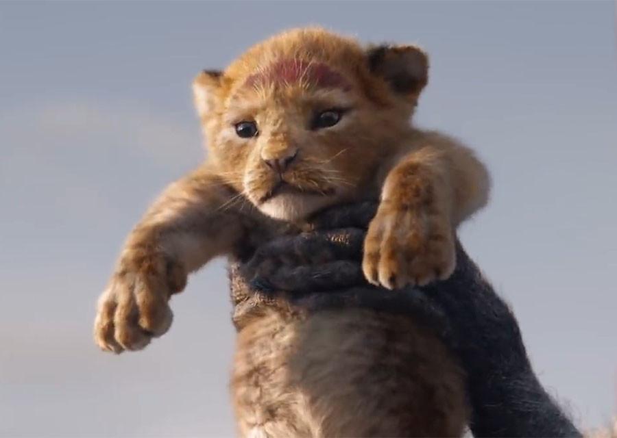 """""""Опять плакать?"""" Вышел тизер-трейлер нового """"Короля Льва"""""""