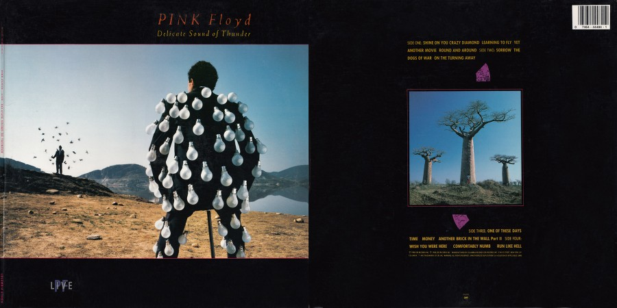 025 Pink Floyd---Delicate Sound Of Thunder (2LP, Columbia, USA) [1988]