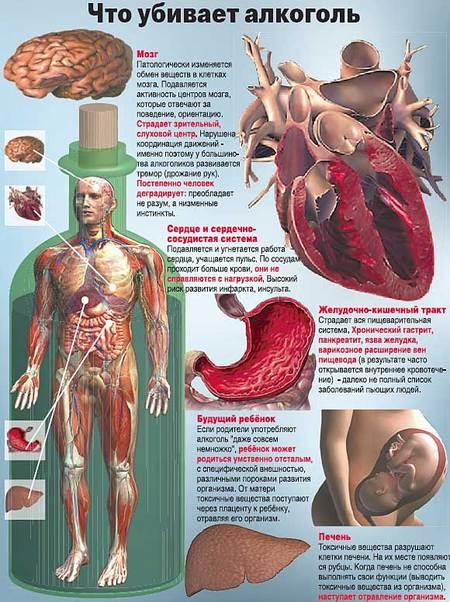 болезни связанные с алкоголем