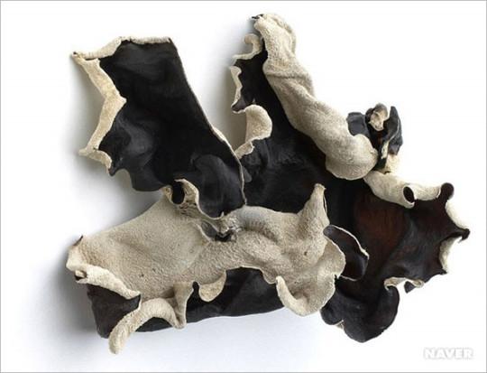 каменный гриб в сушеном виде