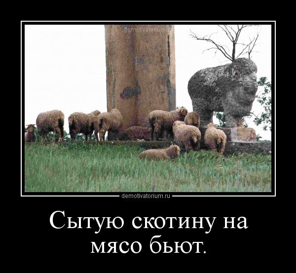 demotivatorium_ru_9241