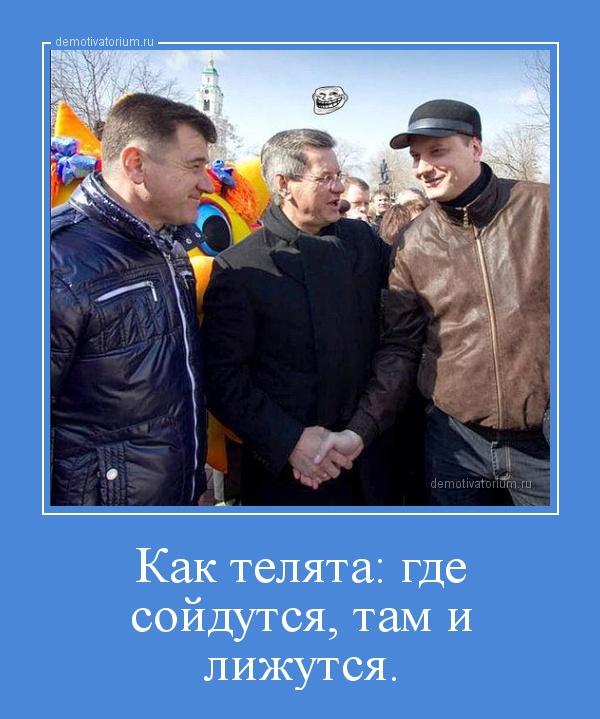 demotivatorium_ru_kak_teljata_gde_sojdutsja_tam_i_lijutsja