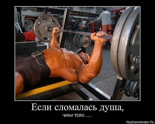 Беллетрист: как заниматься что бы поднимать больше веса жим лежа.