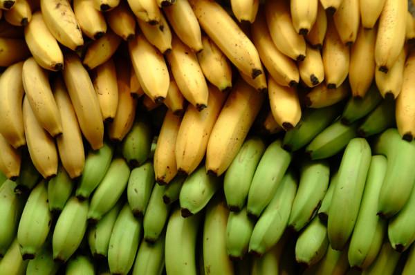Banana-thailand-Kluai