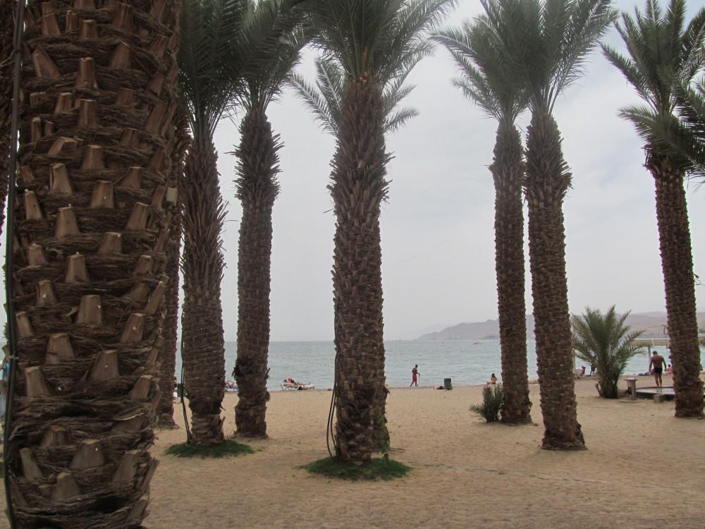Египетмай2012 082
