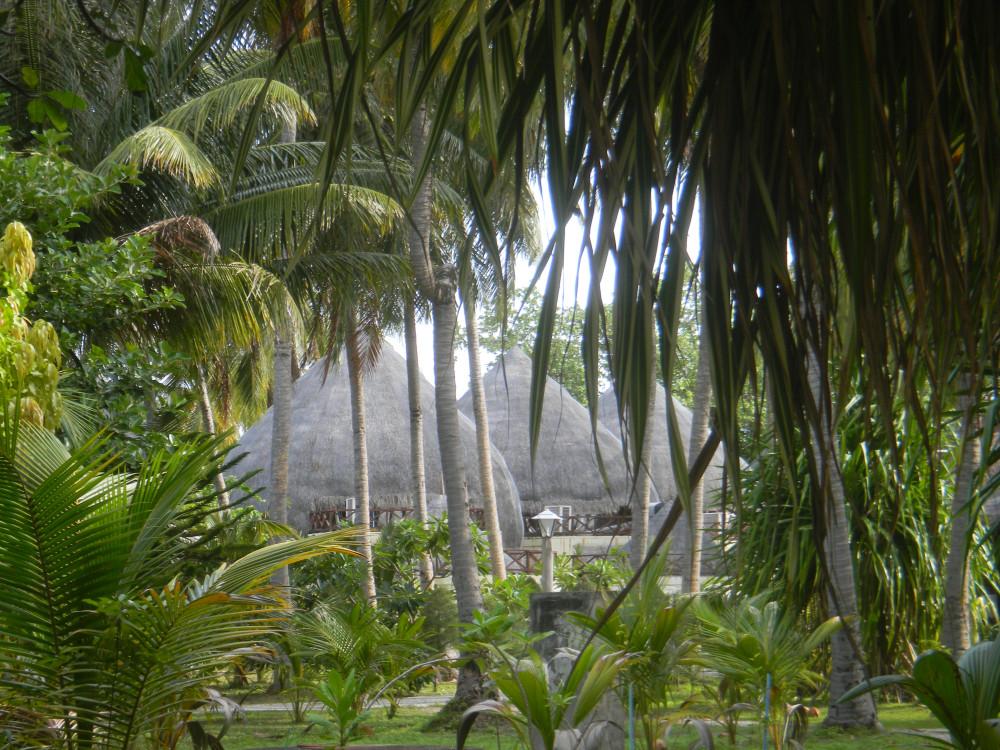Мальдивы2011 753