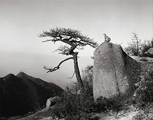 Выставка Искусство гор: через объектив китайского фотографа