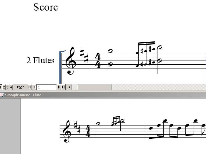 Партитура и партия первой флейты