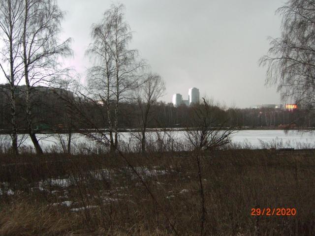 На полуострове посреди Кировского залива