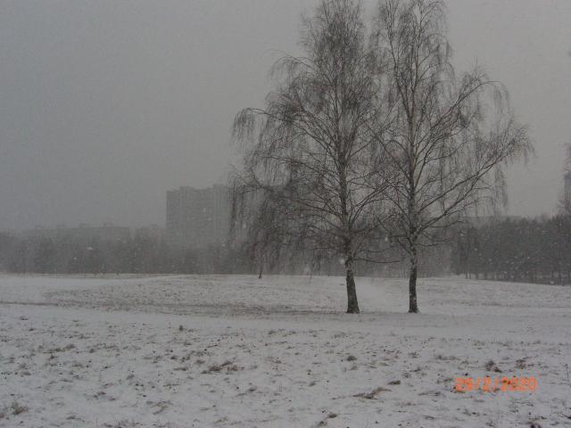 Метель на берегу возле улицы Исаковского