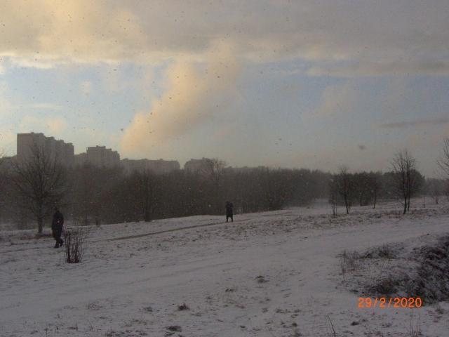 Лучи солнца сквозь снегопад