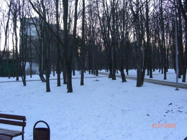 Сквер во дворах Давыдково